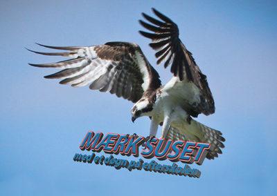 Efterskolen Flyvesandet - en skole i naturen